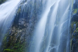 Details of Proxy Falls