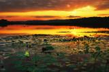 Spring Lake sunrise