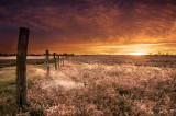 Windy chilly sunrise