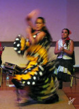 IMG_8486 Flamenco in Lima Jan16