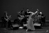 2010_10_16 Flamenco in Vivo - Libre
