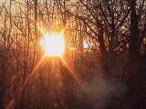 December Sunrise - elke.jpg