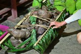 Yams from Pohnpei. IMG_3982.jpg