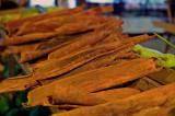 Cinnamomun carolinense A local bark used for lung problems. L1005929.jpg