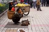 Ducks for sale on sidewalk, an unofficial sidewalk market.