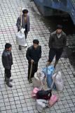 Looking for work. Jishou City, China.