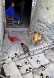 Chickens and ducks. Near Gau Shan, a high mountain village.