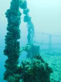 ex-HMAS Brisbane 2009
