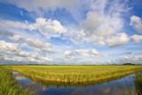 Provinsje Fryslân