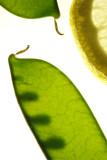 090201-3.jpg