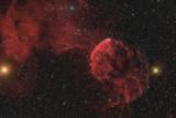 IC443/IC444 in Gemini (APOD)