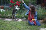 Leslie's Garden - 4/26/09