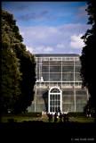 Palm House, Kew