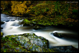 River Tavy on the Rocks