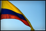 Flag, Cartagena