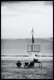 More Lifeguards Than Bathers....