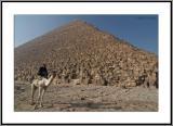 Khufu Pyramid and guardian