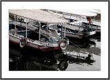 Boatman Siesta
