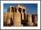 Pillars and Half Pillars