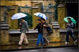 Walking In The Rain