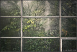 Steamy Window Grid