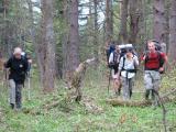 Podejście przez las(IMG_2751.JPG)