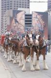 St Patricks Parade 2006 Dallas, Texas