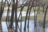 Dallas' White Rock Lake Sustained Damages after Major Rainfall