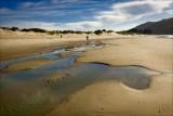 Aramoana Beach, Waitangi Day.