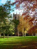 Cheshire & Shropshire.