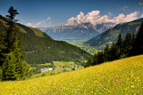 Schmittenhöhe Zell am See Trail: Slopes with Wild Flowers