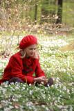 Ultimate Spring