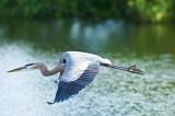 GBH-In flight