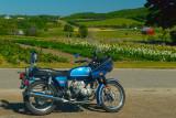 BMW at Bills Farm Petoskey MI