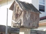 One of Sam's many birdhouses.