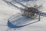 Schneeharfe