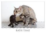 bath time 9039.jpg