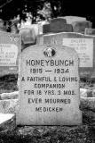 honeybunch