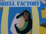 At the Shell Factory Reilly