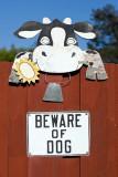 8/9/2010  Beware of Dog