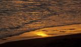 Sun Surf Sand _MG_0205.jpg