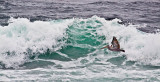Wave and Wings _MG_5528.jpg