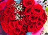 Red roses _MG_1709.jpg