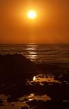 Pacific Sunset of the orange variety _MG_4036.jpg