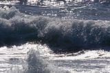 ex rolling foamy wave_MG_9187.jpg
