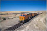 Hot Rail 2010