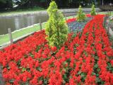 In Doho park