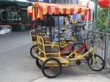 Emmas new method of transport