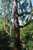 Kvarner Bucht Park Angiolina
