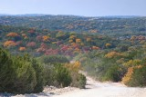 Fall Colors on the Backroads in the Hill Country